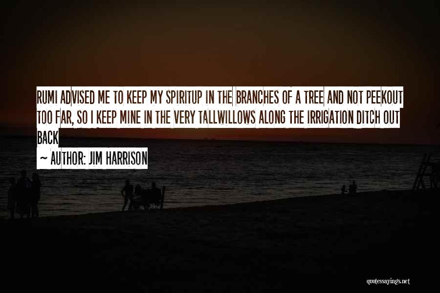 Jim Harrison Quotes 1214015