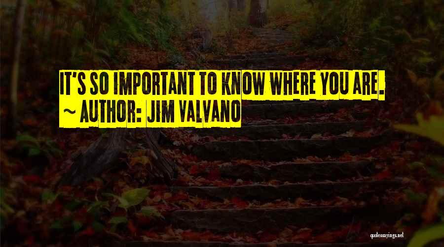 Jim Valvano Quotes 682736