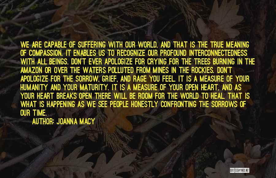 Joanna Macy Quotes 1882641