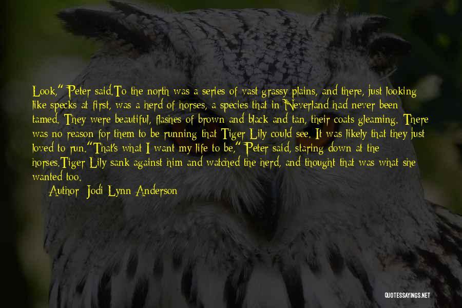Jodi Lynn Anderson Quotes 1539474