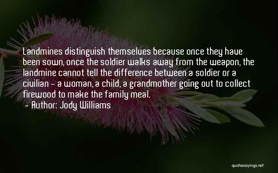 Jody Williams Quotes 114781