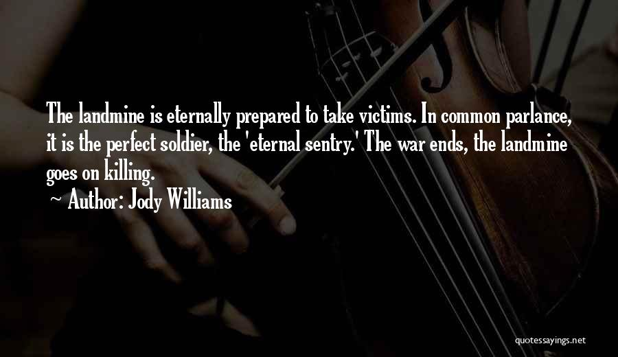 Jody Williams Quotes 1311703