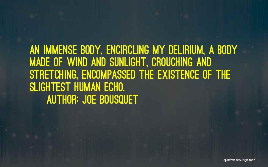 Joe Bousquet Quotes 1649788