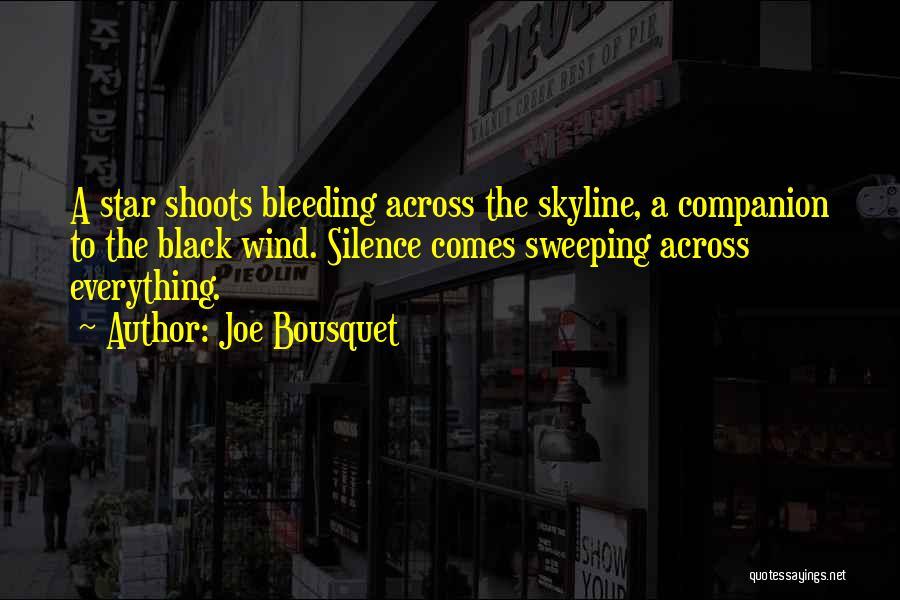 Joe Bousquet Quotes 839496