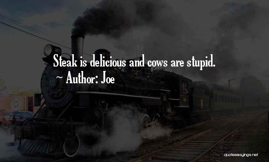 Joe Quotes 270403