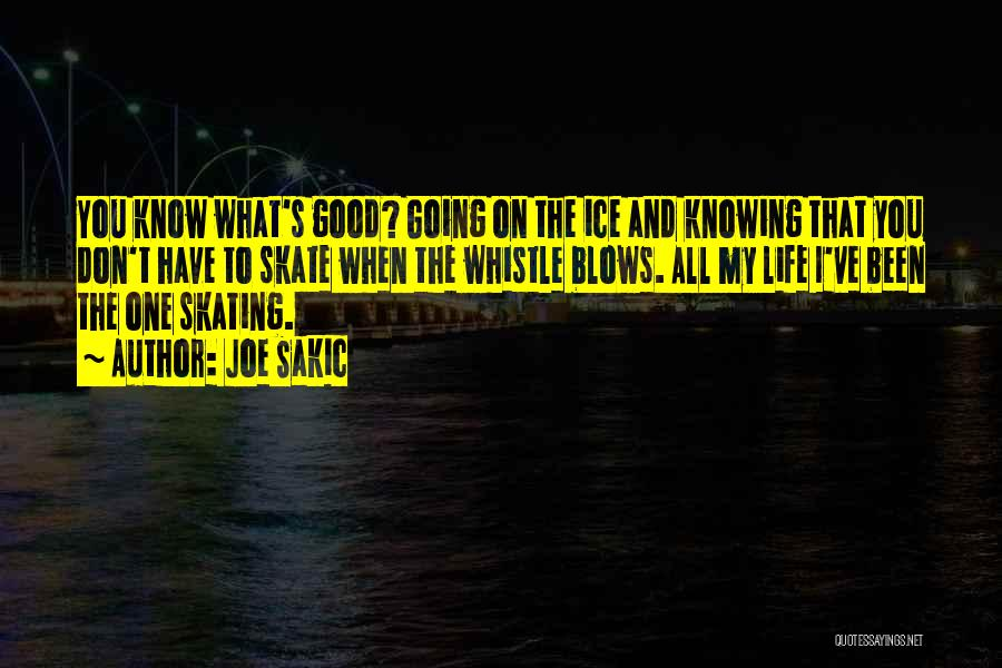 Joe Sakic Quotes 1052714