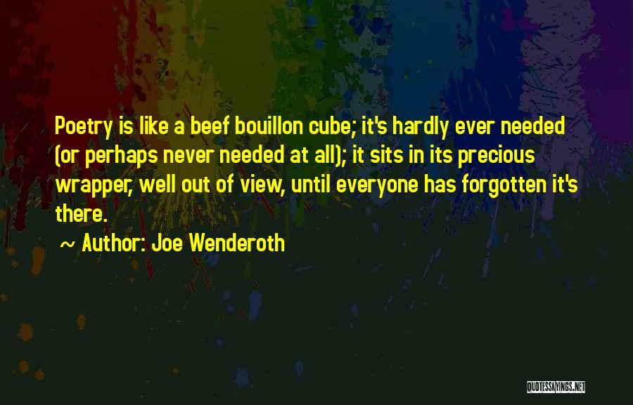 Joe Wenderoth Quotes 2058519