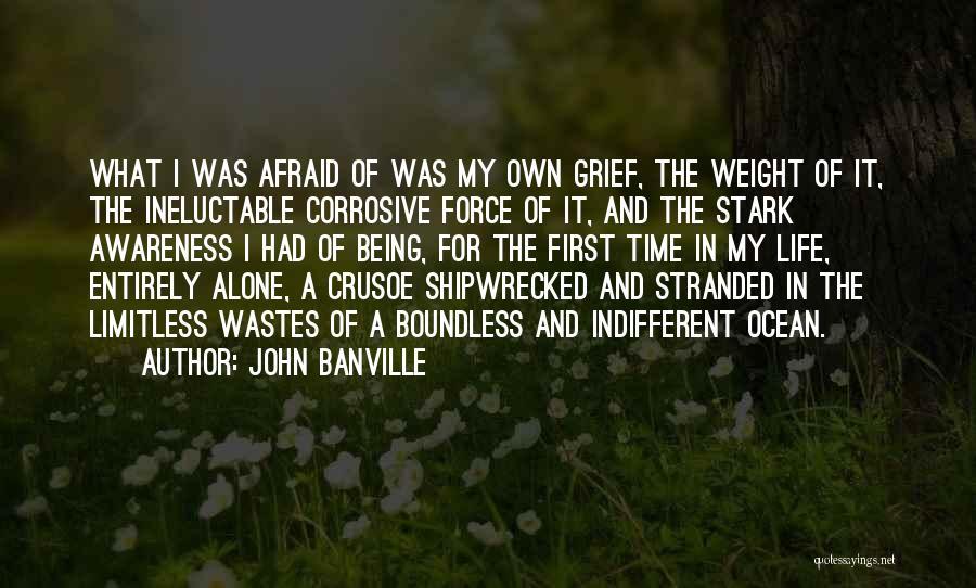 John Banville Quotes 1096445