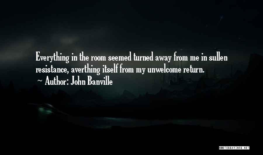 John Banville Quotes 1120219