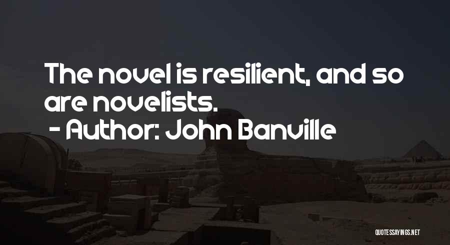 John Banville Quotes 1156341
