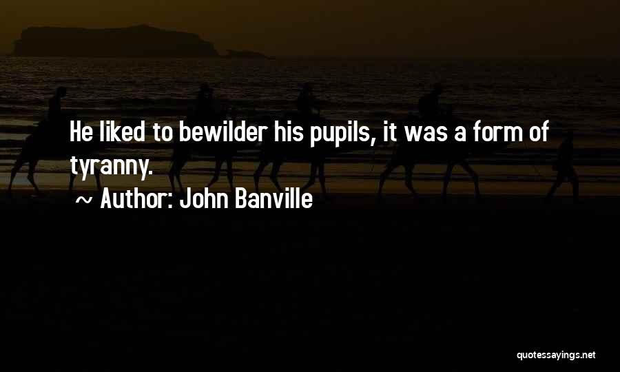 John Banville Quotes 1292617
