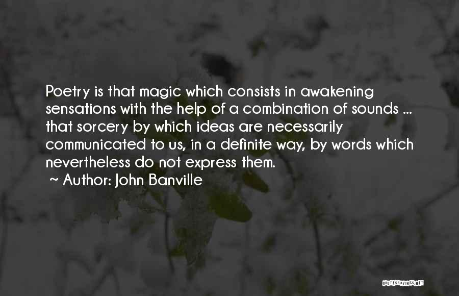 John Banville Quotes 1386479