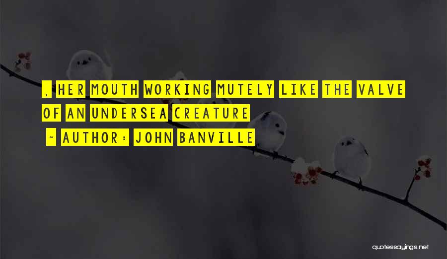 John Banville Quotes 140402