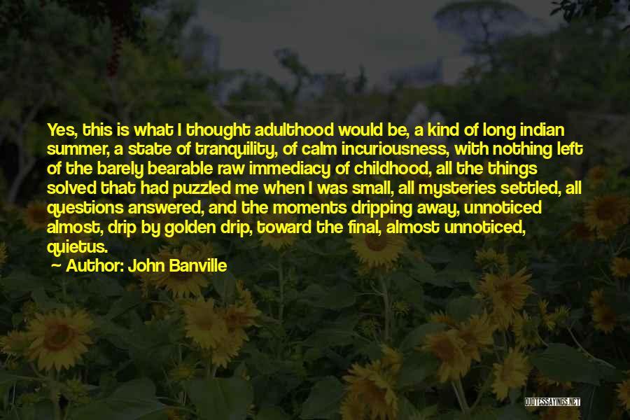 John Banville Quotes 1482836