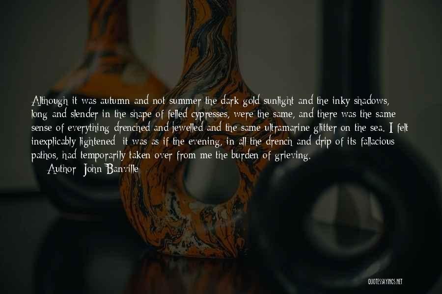 John Banville Quotes 1690741