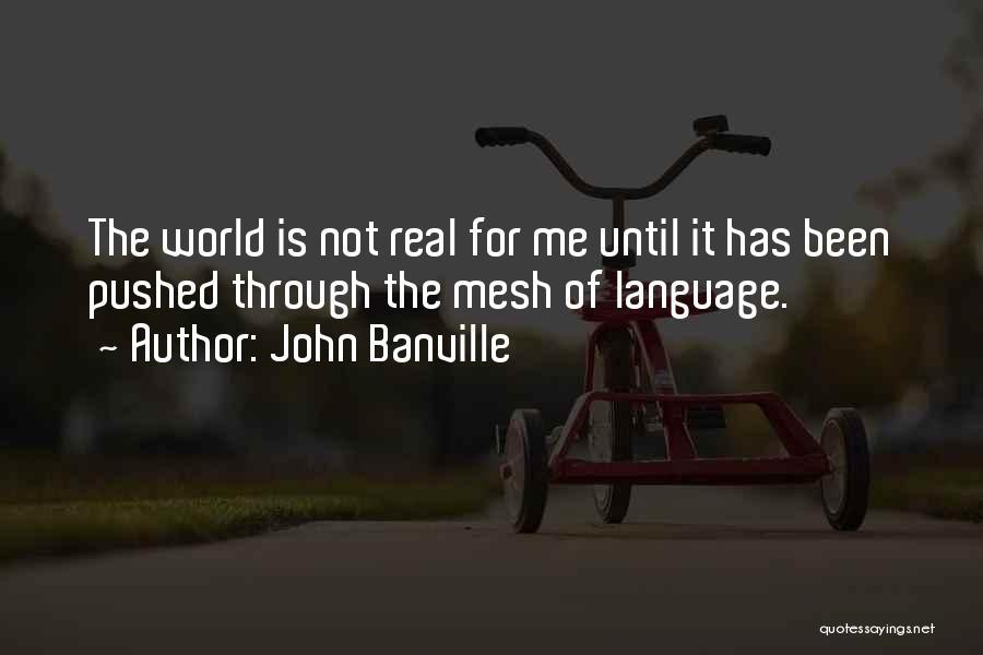 John Banville Quotes 1692395