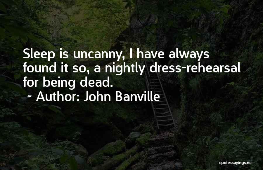 John Banville Quotes 178151
