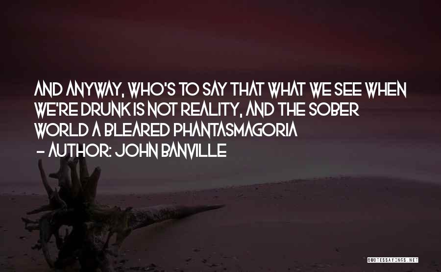 John Banville Quotes 1861109