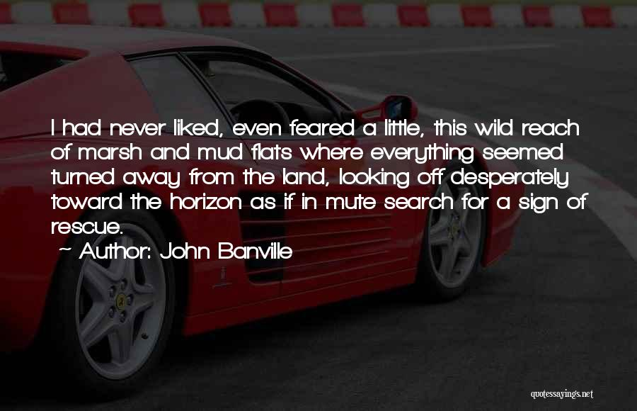 John Banville Quotes 200943