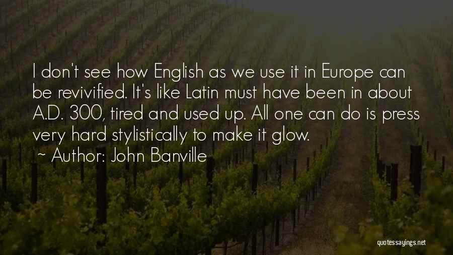 John Banville Quotes 2047429