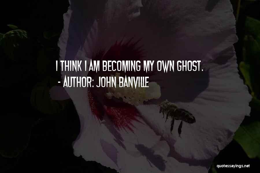 John Banville Quotes 205081