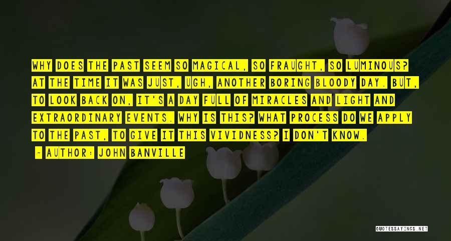 John Banville Quotes 2158564
