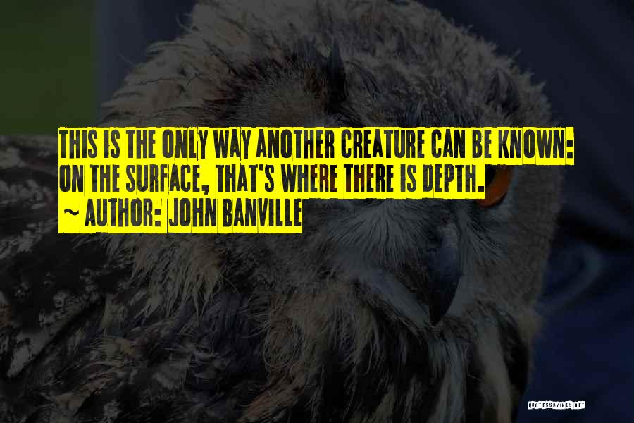 John Banville Quotes 296252