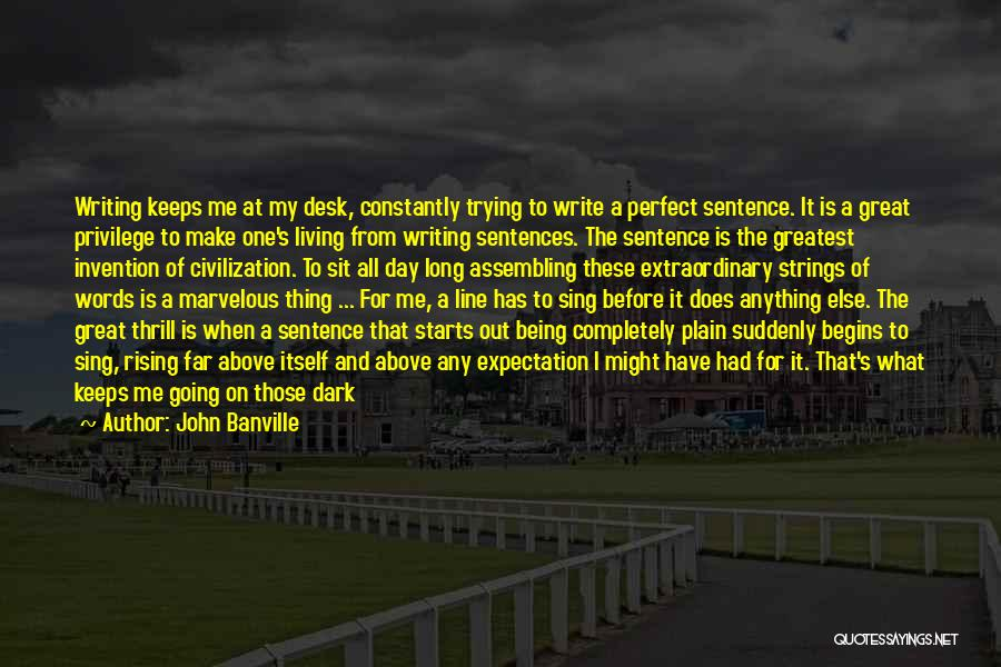 John Banville Quotes 360392