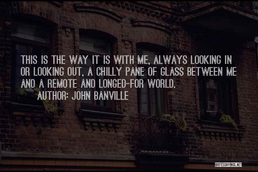 John Banville Quotes 395503