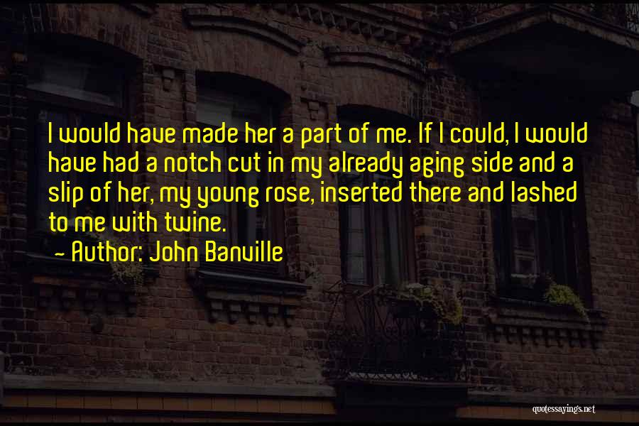 John Banville Quotes 501352
