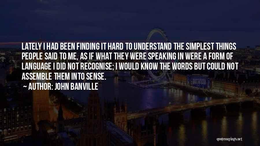 John Banville Quotes 515131