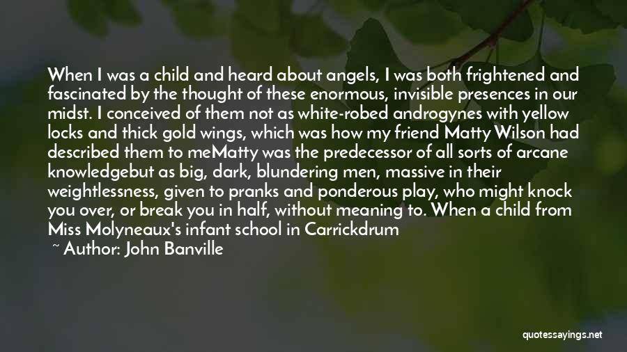 John Banville Quotes 604897