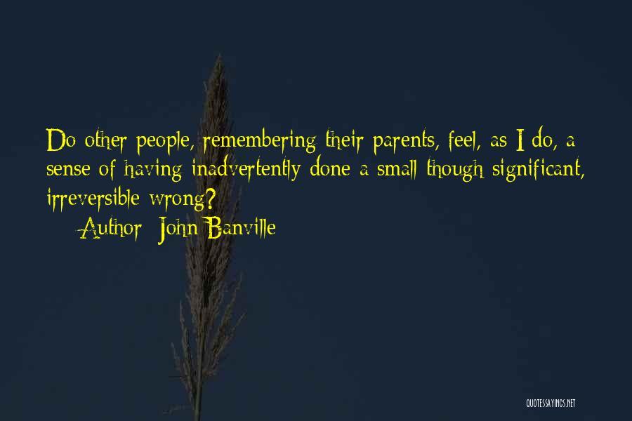 John Banville Quotes 628066
