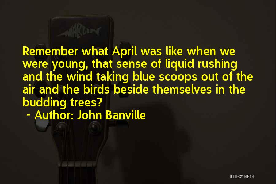 John Banville Quotes 788566