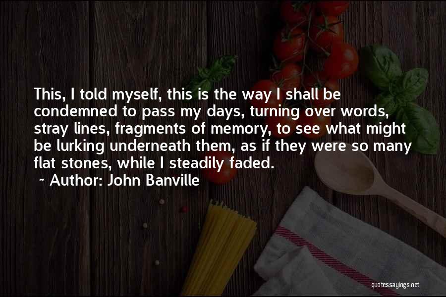 John Banville Quotes 81723