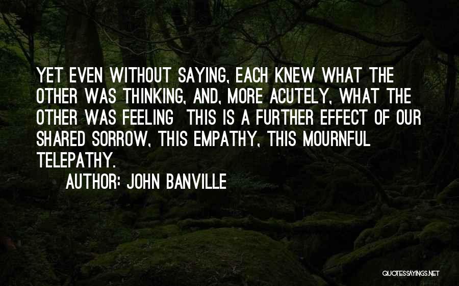 John Banville Quotes 920395