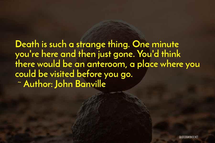 John Banville Quotes 952066