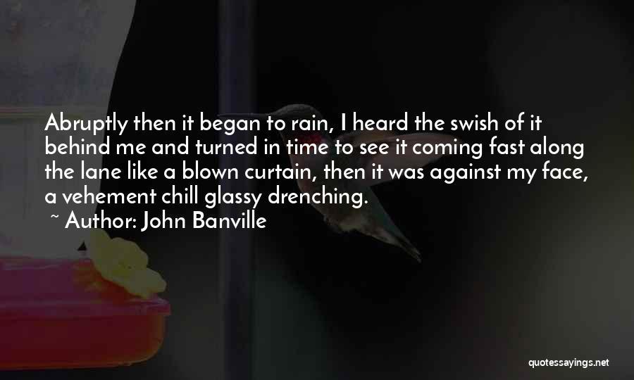John Banville Quotes 998665