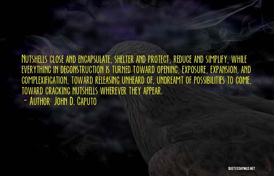 John D. Caputo Quotes 78249