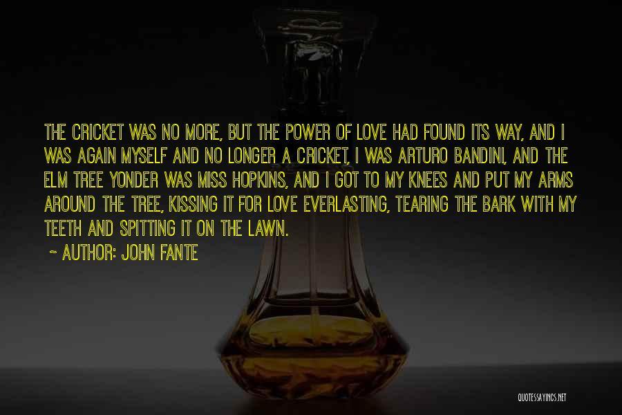 John Fante Quotes 1716005