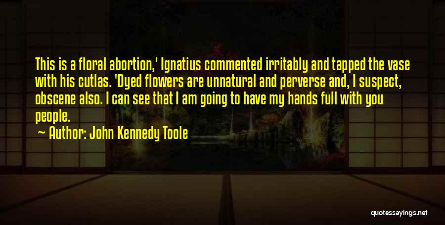 John Kennedy Toole Quotes 1538540
