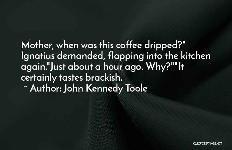John Kennedy Toole Quotes 1762681