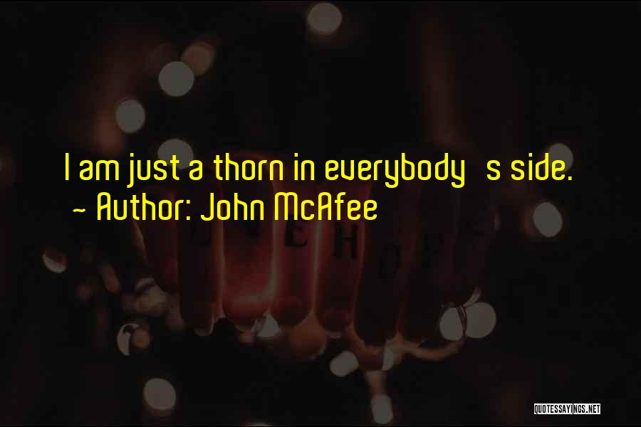 John McAfee Quotes 634846