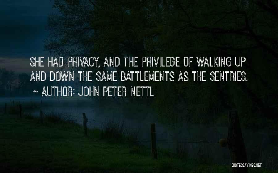 John Peter Nettl Quotes 169554