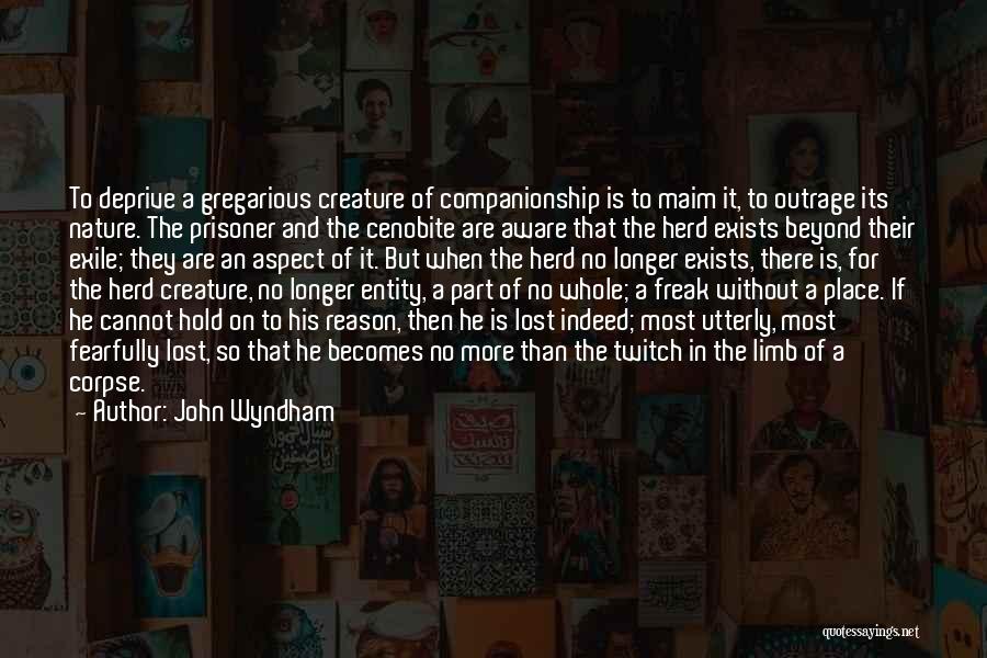 John Wyndham Quotes 1028857