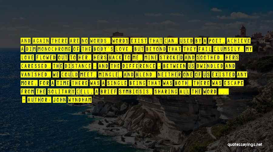 John Wyndham Quotes 1175044