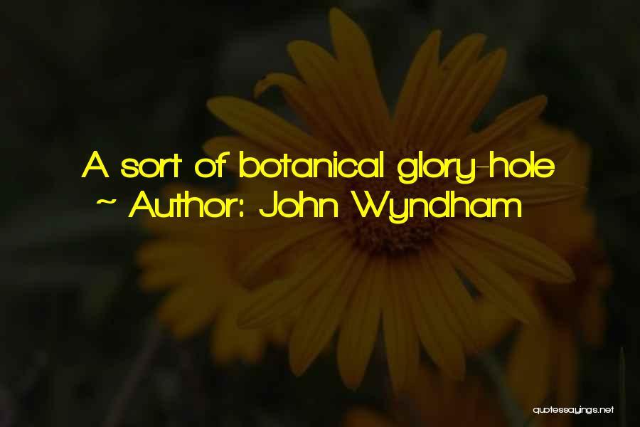 John Wyndham Quotes 1189204