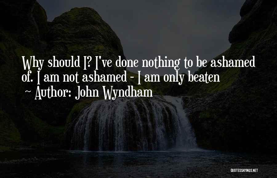 John Wyndham Quotes 1540673