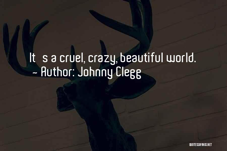 Johnny Clegg Quotes 355623