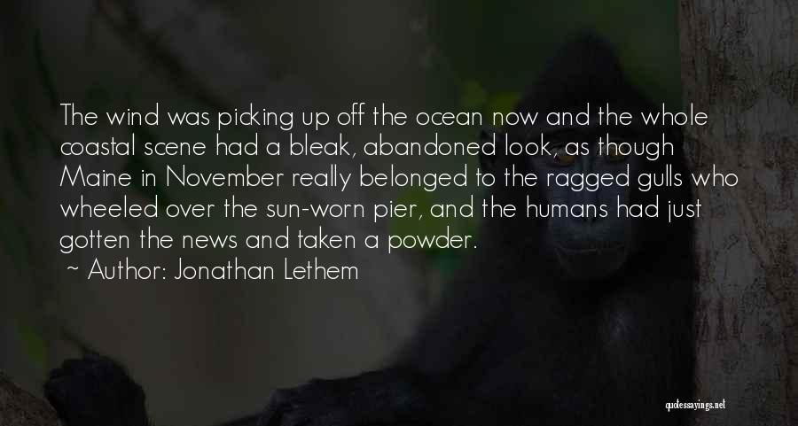 Jonathan Lethem Quotes 142137